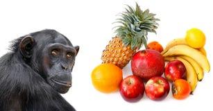 Affe und tropische Früchte Lizenzfreie Stockfotos