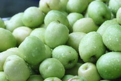Affeapfel, grüne Frucht in Thailand Stockfotos
