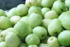 Affeapfel, grüne Frucht in Thailand Stockbilder