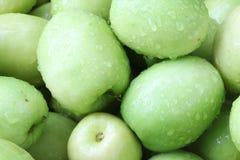 Affeapfel, grüne Frucht in Thailand Stockfotografie