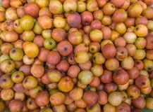 Affeapfelfrüchte im Markt Stockfoto