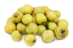 Affeapfelfrucht Stockbilder