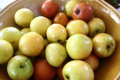 Affeapfelfrucht Stockfotos