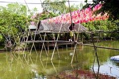 Affebrücke in Vietnam Lizenzfreie Stockfotos
