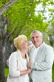 Affection Royalty Free Stock Photos