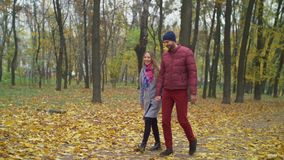 Affectionate couple on romantic date in autumn park. Affectionate cheerful young couple on romantic date holding hands walking along footpath, covered with stock video