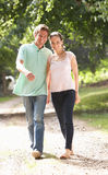 Affectionate Couple Walking In Countryside Togethe Stock Images