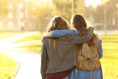 Affectionate friends walking at sunset in a park stock photos