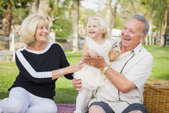Affectionate Granddaughter and Grandparents Playing At The Park Royalty Free Stock Image