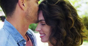 Affectionate man kissing woman in park. During summer stock video footage