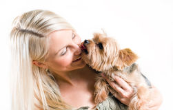 Affectionate pet. Stock Images
