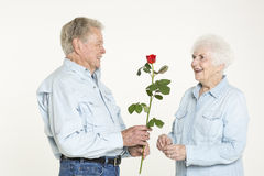 Affectionate senior couple Royalty Free Stock Images