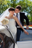 Affectionate wedding couple Stock Image