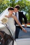 Affectionate wedding couple Stock Image
