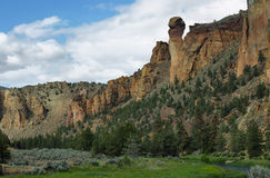 Affegesicht, Smith Rock Park Lizenzfreies Stockbild