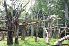 Affehaus im Zoo Lizenzfreie Stockbilder