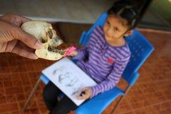 Affeknochen mit asiatische Kinder lizenzfreie stockfotografie
