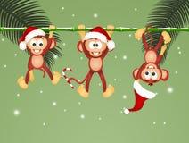 Affen auf Liane am Weihnachten vektor abbildung