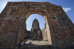 Affen an den Khmertempelruinen Stockfotografie