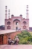 Affen am indischen Palast Stockfotos