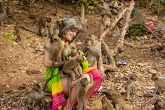 Affen umgaben einen glücklichen Touristen, der sie mit Frucht einzieht lizenzfreie stockbilder