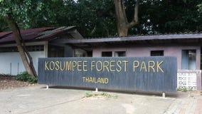 Affepark Thailand lizenzfreie stockfotos