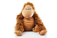 Affeplüschspielzeug im Studio brauner Affe, netter Affe, gefälschter Affe, Plüschaffe, Spielzeugaffe, Schimpanse, Jocko, Gorilla Stockbilder