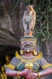 Affesitze auf der Statue Stockbild