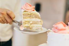 Affettatura della torta nunziale Fotografie Stock