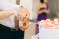 Affettatura della torta nunziale Fotografie Stock Libere da Diritti