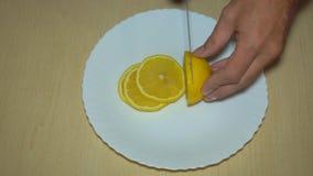 Affettatura dello spezzettamento del limone video d archivio