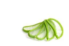 Affetti l'aloe Vera una medicina di erbe molto utile Immagini Stock Libere da Diritti