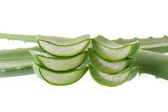 Affetti l'aloe Vera una medicina di erbe molto utile per cura di pelle e fotografia stock libera da diritti