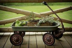 Affichage antique de fleur de chariot Photo libre de droits