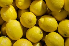 Affichage coloré des citrons images libres de droits