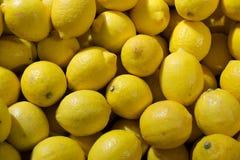 Affichage coloré des citrons image libre de droits