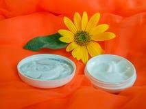 Affichage cosmétique de jaune, de vert, de blanc, et orange photographie stock