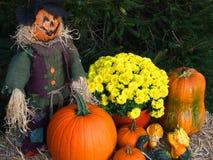Affichage d'automne Photographie stock libre de droits