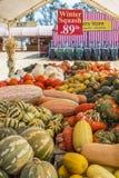 Affichage de courge colorée à la ferme d'air ouvert photographie stock
