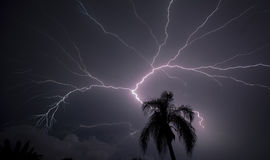 Affichage de foudre au-dessus de la Floride Photo stock