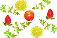 Affichage de fruit Image libre de droits