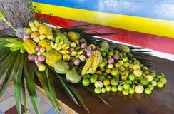 Affichage de fruit tropical, Seychelles Images libres de droits