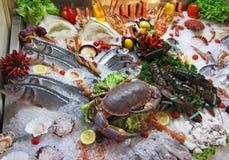 Affichage de fruits de mer de Venise Photographie stock
