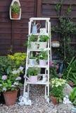 Affichage de jardin photos stock