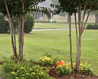 Affichage de jardin d'automne photo stock