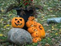 Affichage de lanterne de Jack O pour Halloween Images libres de droits