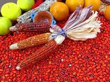 Affichage de nourriture du Mexique Images stock