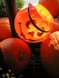 Affichage de potiron de lanterne de Jack O photographie stock