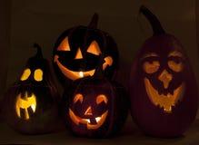 Affichage de potiron pendant le festival de Halloween Image libre de droits