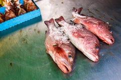 Affichage de stalle de poissons Photo libre de droits